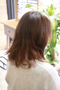 髪のダメージって治るの!?|豊島区大塚駅にある美容室 Repro (リプロ) くせ毛お悩み解決サロン